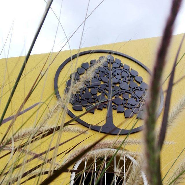 Aplicación de marca con árbol tailandés para #elspaoriental #acincoteam #lopezco