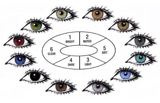 rarest eye color in humans   human-eye-color-chart