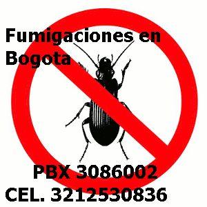 Control Plagas Bogota Cundinamarca PBX: 3086002: Control plagas Bogota pbx:3086002