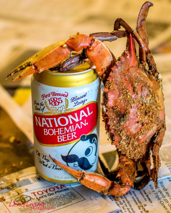 Steamed Crabs. Natty Boh. Maryland Blue Crab. Baltimore. Photography.