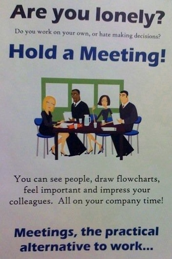 hold a meeting!: Dumb, Eclectic, Hold, Meeting, Funny, The Roller Coasters