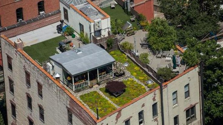 This bucolic cabin is located on a roof in Manhattan