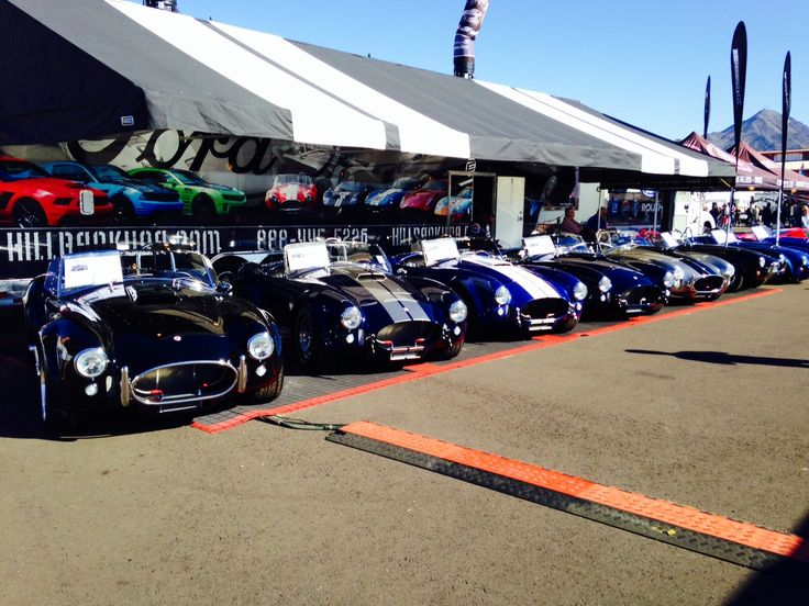 Frontal view of these beautiful cars brought by Hillbank and Superformance.