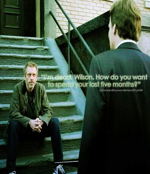 House - I'm dead, Wilson... How do you want to spend your last 5 months?