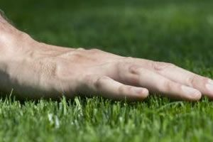 Learn how to cut Bermuda Grass the right way.