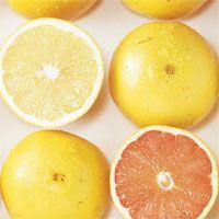 グレープフルーツはエストロゲンを増やしテストステロンを減少させる