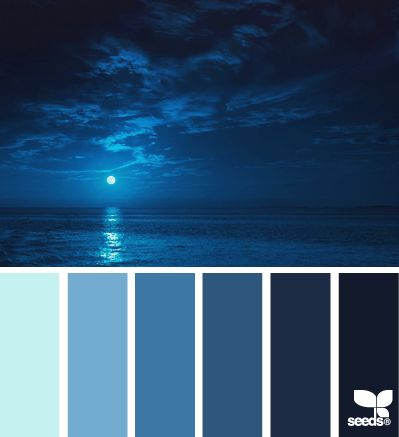 moonlight blues  Color Palette - Paint Inspiration- Paint Colors- Paint Palette- Color- Design Inspiration