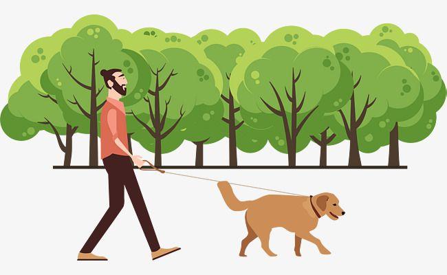 Dog Walking Dog Women People Silhouette Dog Walking Dog Women People Silhouette Hunde Kvinder Silhuet