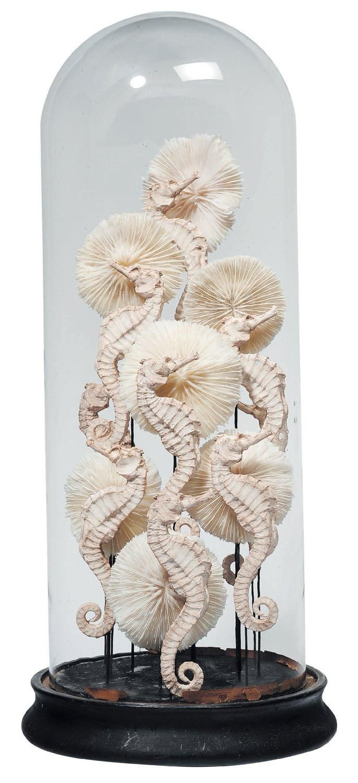 Composition de coraux et d'hippocampes en plâtre, sous un globe. H_51 Antique Victorian globe