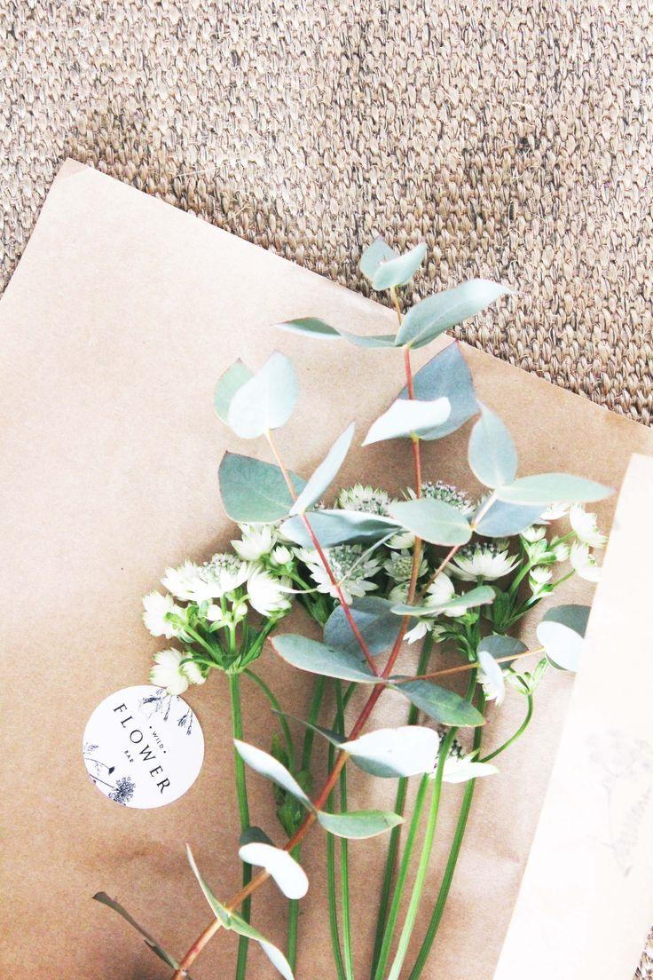 Wildflower - eucalyptus leaves