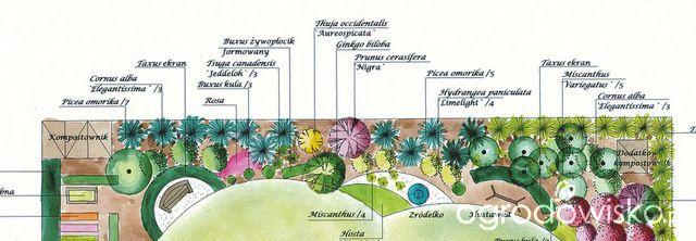 Pojedyncze pytania na temat projektowania rabat - strona 2 - Forum ogrodnicze - Ogrodowisko