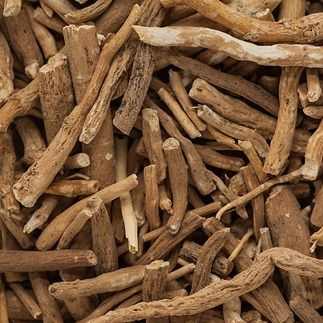 """""""One 2015 study of ashwagandha root extract focused on cardiorespiratory endurance in 50 healthy, athletic adults. A group that took 600 milligrams of ashwagandha root extract daily and a group that received a placebo were followed and tested over a period of 12 weeks, for overall endurance and oxygen consumption during exertion. The ashwagandha group scored higher in endurance and oxygen efficiency than those who took the placebo."""" #hanahone #hanahliving"""