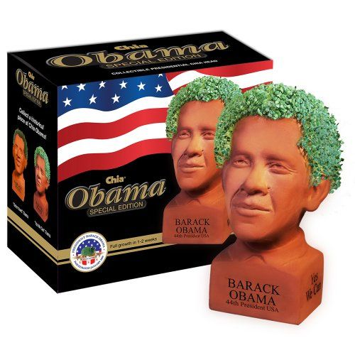 The Barack Obama Chia Pet. Question: Is this a better gift for supporters or haters?