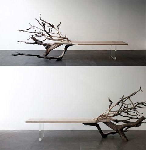 half tree half bench Half Tree, Half Bench