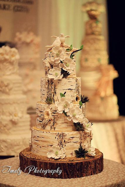 birch tree wedding cakes | Birch tree-trunks-Hyatt Sarasota - The Cake Zone. | Flickr - Photo ...