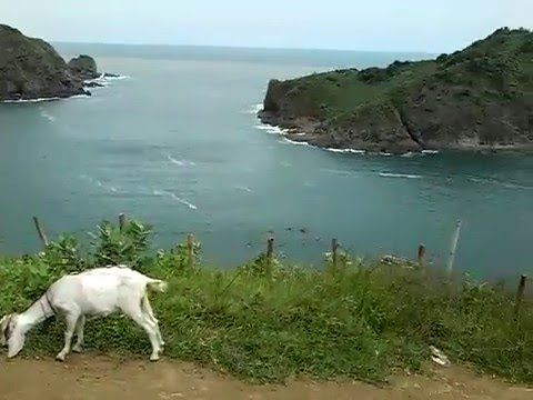 Love bay beach Jember Indonesia - YouTube