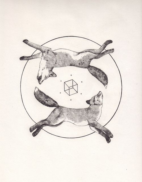 Two dead foxes and a cube. by Peter Carrington, via Flickr: Foxes Tattoo, Tattoo Ideas, Peter O'Tool, Cubes Tattoo, Tattoo Inspiration, Dead Foxes, New Tattoo, Carrington Illustrations, Peter Carrington