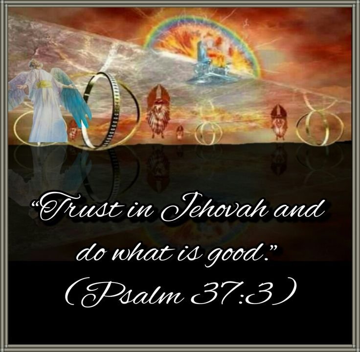 """2017 Year text/""""Trust in Jehovah and do what is good."""" —Psalm 37:3."""