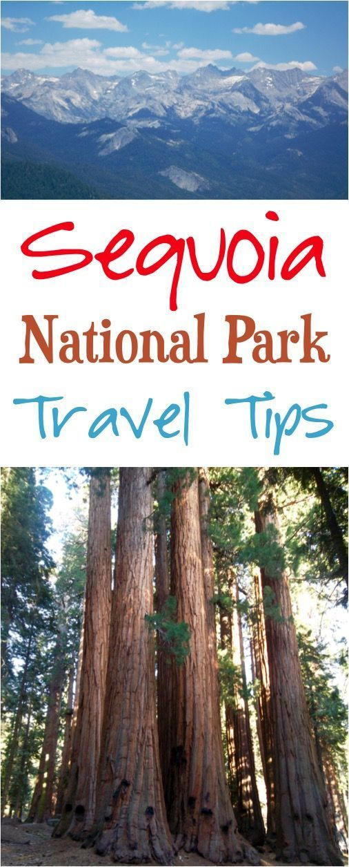 Sequoia National Park Top hikes things to