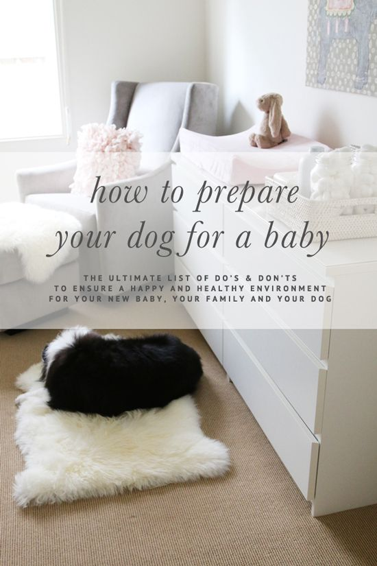 how to best prepare for pregnancy