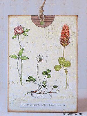 Klaudia GR - Kartka z zielnika