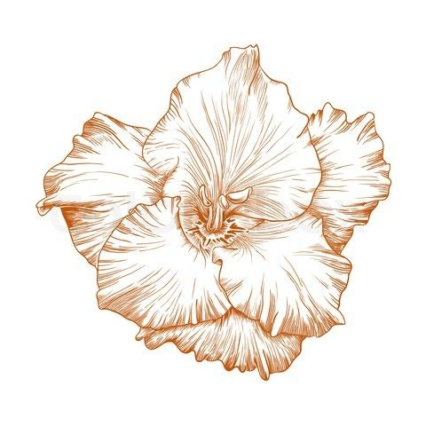 Thinking about a gladiolus flower with two hummingbirds representing my grandmothers.  Gladiolus represent strength.  They both had that.  :D