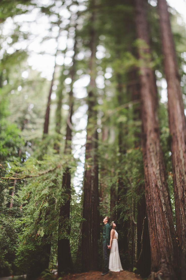 redwood wedding photographs, california wedding photographers, destination wedding ideas.