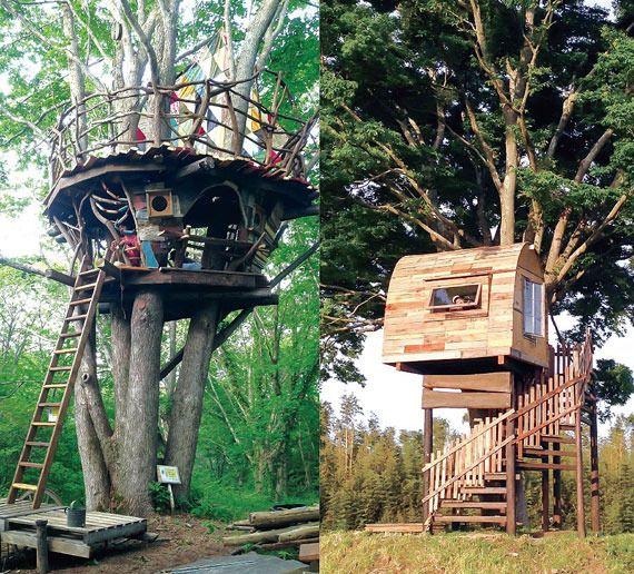 樹上のワンダーランド!!「いつかツリーハウスを作りたい・・・」そんなあなたの為の1冊 | ARTIST DATABASE