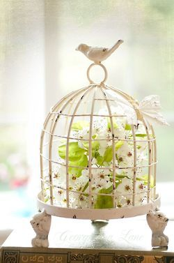 742 Best Birdcages With Flowers Images On Pinterest The