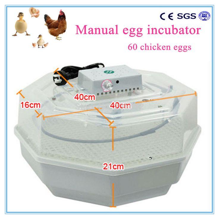 eggs manual