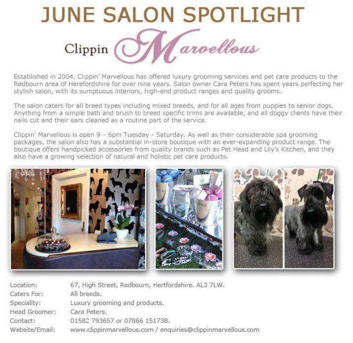 Salon Spotlight June 2013, Clippin' Marvellous