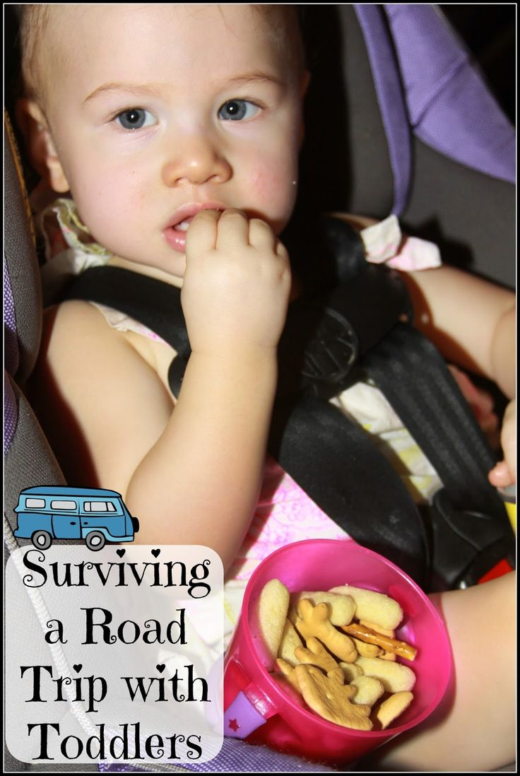 Surviving a Road Trip with Toddlers #GerberWinWin