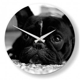 Horloge chien dog Nextime