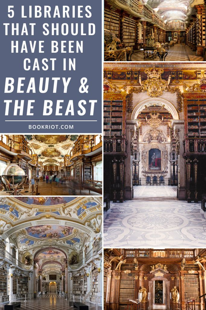 5 Libraries That Should Have Been Cast In Beauty And The Beast