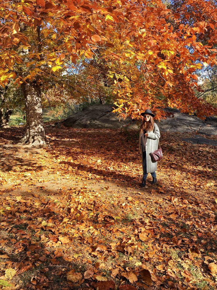 Central Park, NY #myurbandrops #travel #destination #fall #autumn #leaves #nature #colors #beauty #centralpark #ny #nyc #newyork