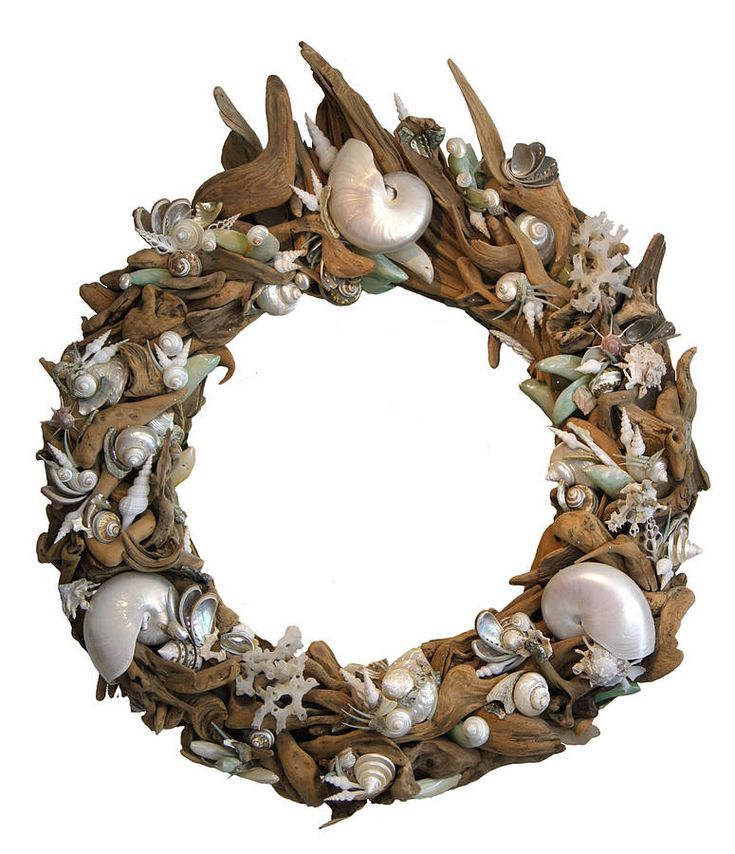 driftwood and exotic shell mirror by karen miller @ devon driftwood designs | notonthehighstreet.com