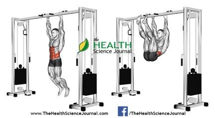 © Sasham | Dreamstime.com - Exercising for bodybuilding. Pulling the legs to the arms hanging on the crossbar