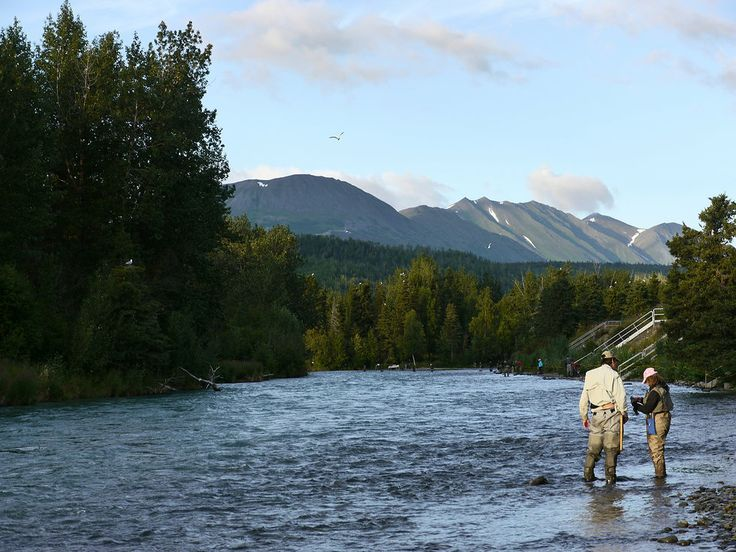 17 best images about gwin 39 s lodge kenai peninsula