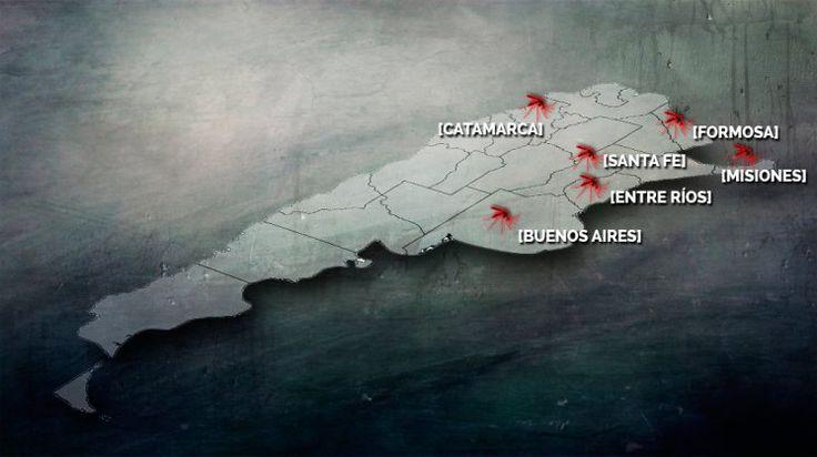 Dengue: ¿por qué preocuparse? El mapa de la enfermedad en el país