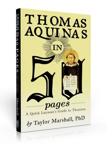Thomas Aquinas in 50 Pages