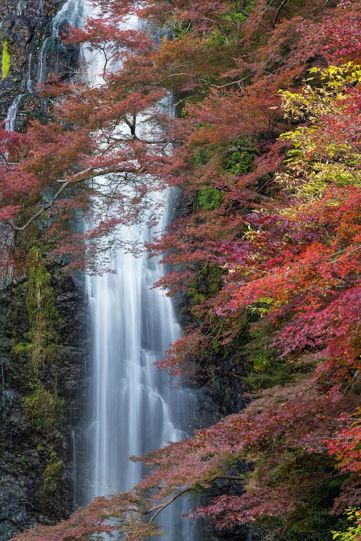 Photograph Colorful Fall by Chaluntorn Preeyasombat on 500px