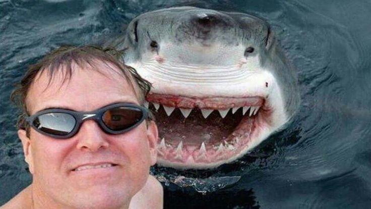 17 Most Dangerous Selfies Ever Taken