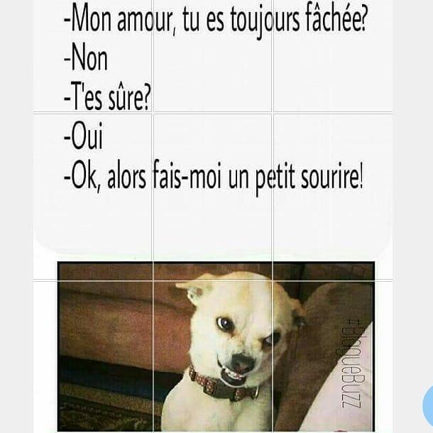 Merci Humour De Merde3 Instagram Mouton Resilient