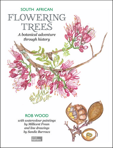 Indigenous flowering trees, how many more reasons could you have to plant one?