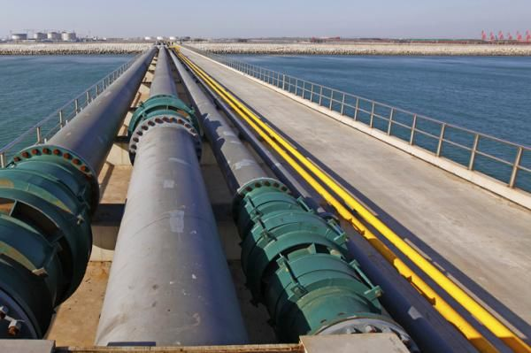 China could become one of the major shareholders in Transneft, the state-backed oil pipeline company in Russia, one of its directors said…