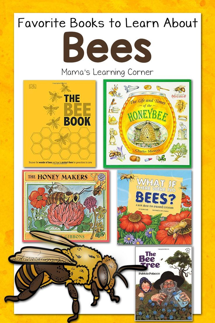 the bee book discover the wonder of bees and how to protect them for generations to come