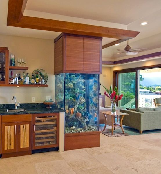 140 best Aquarium and interior design images on Pinterest | Aquarium ...