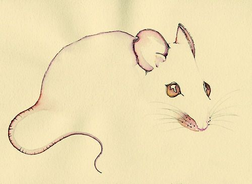 Line Art Mouse : Best ideas about rat tattoo on pinterest