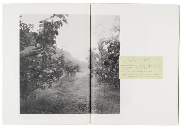 deszczowe-dni:  Raymond Meeks, from the books 'Where Objects Fall Away' and 'orchard journal'