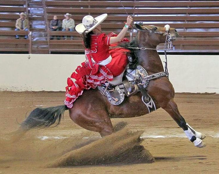 235 best CHARRO images on Pinterest  Guadalajara Saddles and Horse gear
